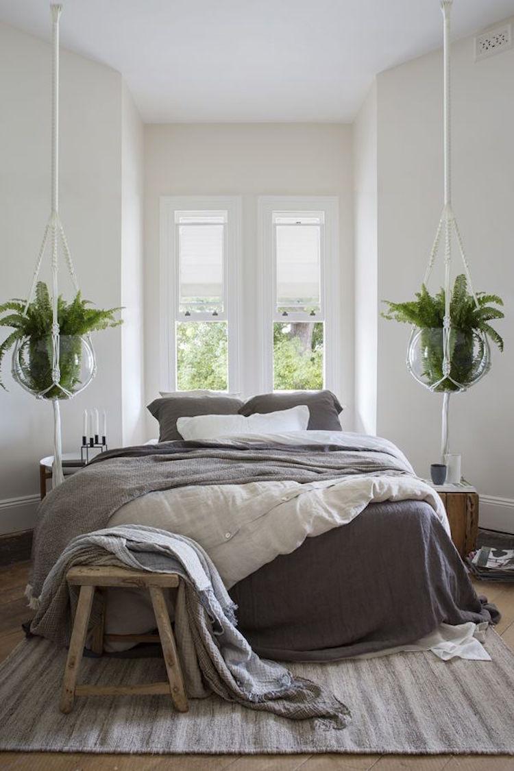 Comment choisir les plantes d int rieur deco maison - Plante dans la chambre ...