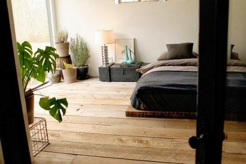 Plantes pour chambre à coucher