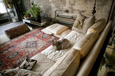 papier peint rough luxe séjour