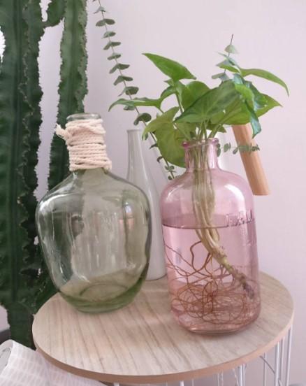 Vases en verre pour décoration pastel